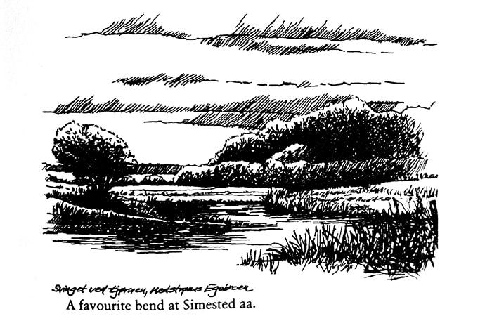 Simested aa