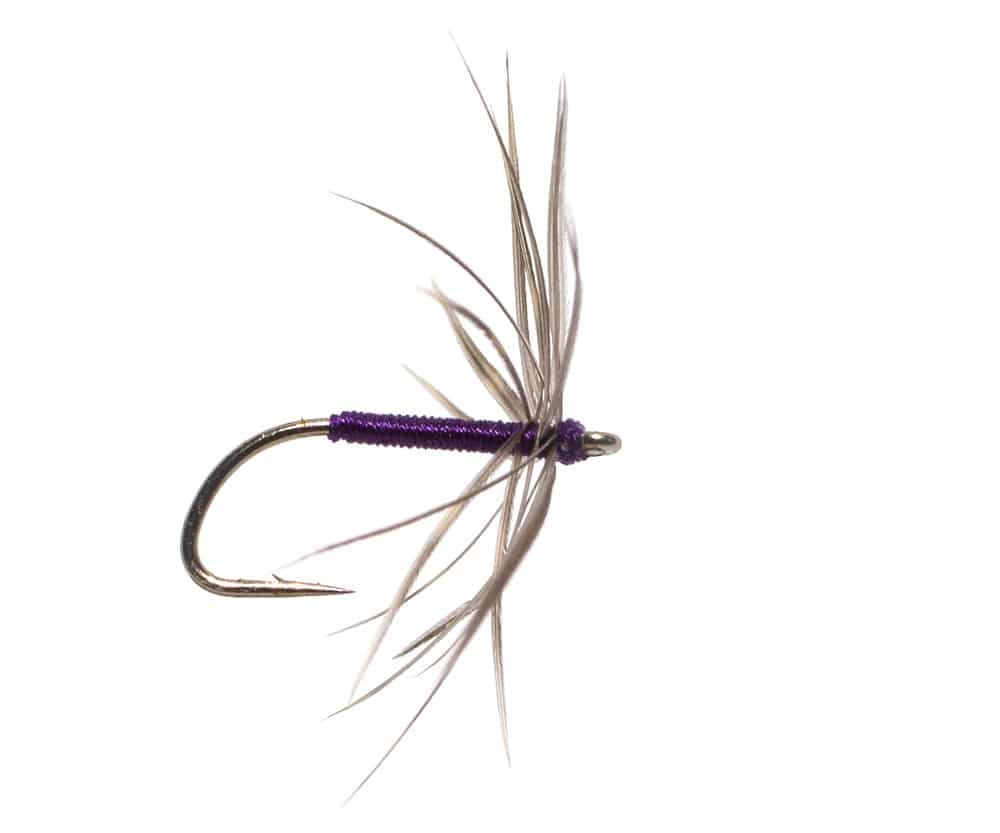 North Country Spider Snipe and Purple