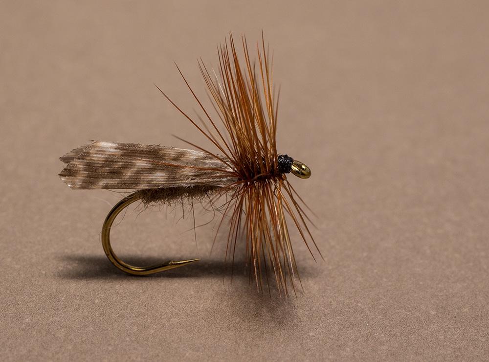 Sedge Dry Fly the Kings River Caddis