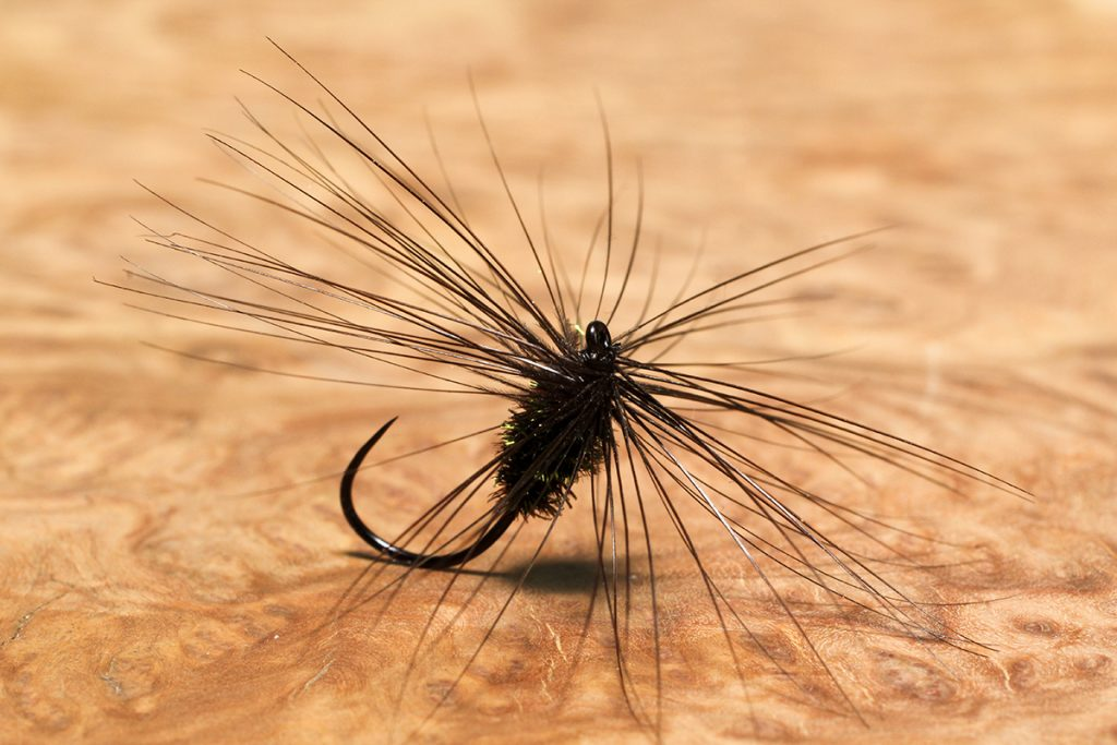 Baigent's Black Variant dry fly