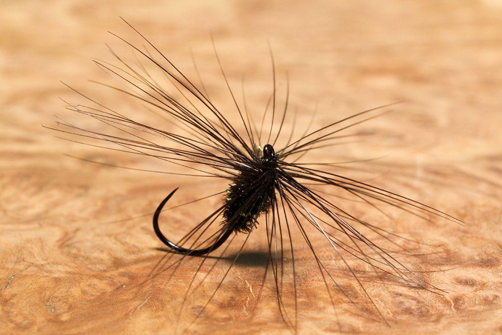 Baigent's Black Variant dry fly