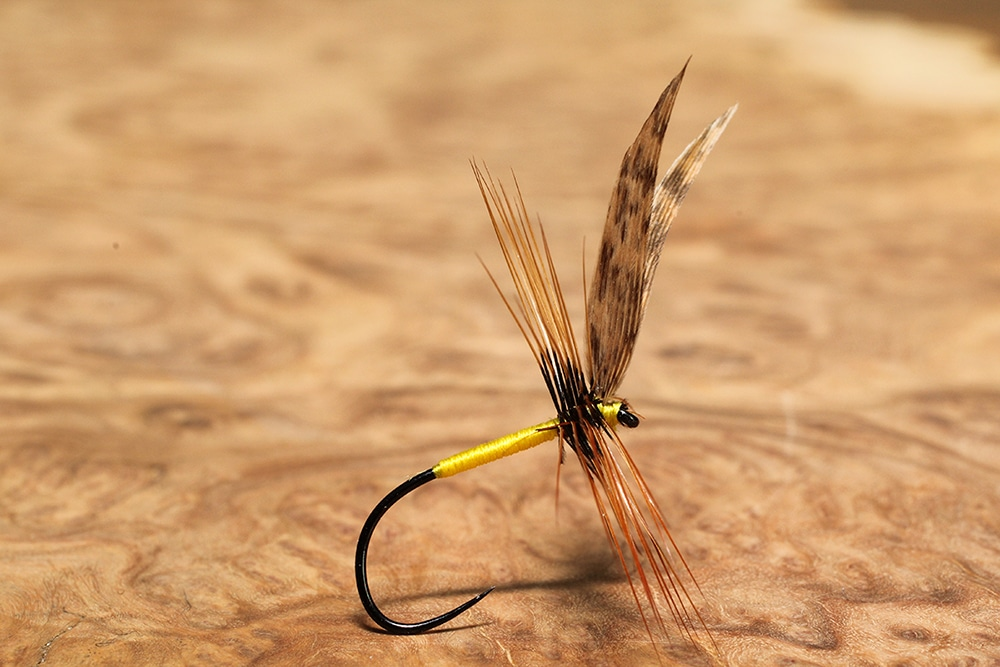 Dr William Baigent's Brown dry fly
