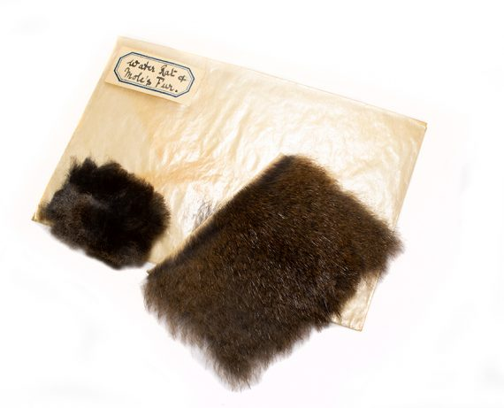 North Country Spiders Flytying Materials Water-rat Fur